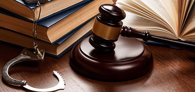 Защита граждан по уголовным делам на стадии предварительного расследования